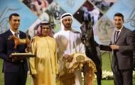 «الزبير» و «دبي» و «هنايا»  أبطال عجمان ٢٠١٧ لجمال الخيول العربية – النتائج النهائية