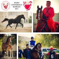 مؤتمر المنظمة العالمية للخيل العربية الأصيلة WAHO ينطلق اليوم بالبحرين