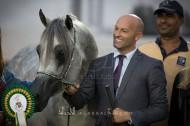 نتائج فئات اليوم الثالث والرابع لبطولة أبوظبي الدولية لجمال الخيول العربية 2017