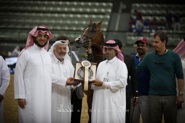 مهرات «الشقب» تتألق في أول أيام بطولة قطر الدولية الــ26 لجمال الخيل العربية – نتائج الفئات