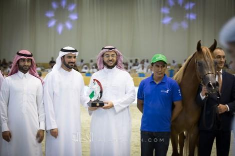 انطلاقة ساخنة لبطولة دبي الدولية للجواد العربي ٢٠١٧ – نتائج فئات اليوم الأول