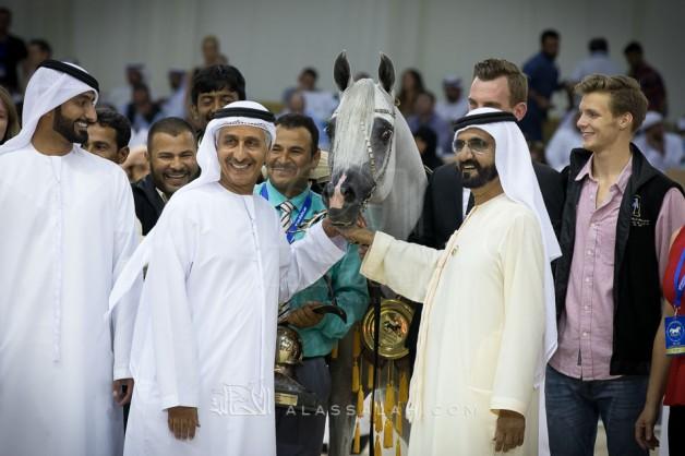 «دبي» و«عجمان» و«العالية» و«الهواجر» أبطال (دبي الدولية 2017) للجواد العربي الـ14 – النتائج النهائية بالصور