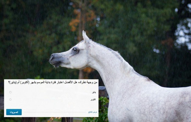تصويت: ما الأصحاحتساببداية موسم بطولات جمالالخيلالعربية في: (يناير) أم (أكتوبر)؟ وما تبعاته؟