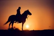 خيلٌ في آية: (وَأَعِدُّوا لَهُمْ مَا اسْتَطَعْتُمْ مِنْ قُوَّةٍ وَمِنْ رِبَاطِ الْخَيْلِ…)