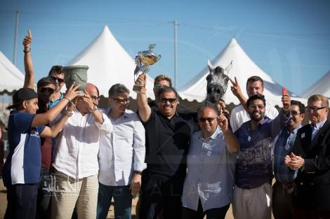 صور مقتطفة لليوم الأول من بطولة منتون ٢٠١٧ الدولية لجمال الخيل العربية الأصيلة