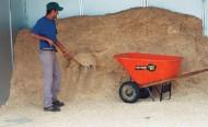 """دراسة: في إمكان """"نشارة الخشب"""" تحسين نوعية تربة بادوك التدريب"""