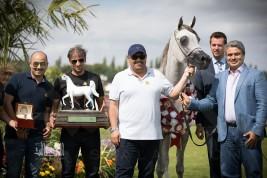 «الخشاب» يحلق عالياً بأغلى ألقاب بطولة العالم لمنظمة الجواد العربي (شانتلي 2017) – النتائج النهائية بالصور