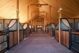 بناء اسطبل الخيول (التصميم والسلامة والصحة)