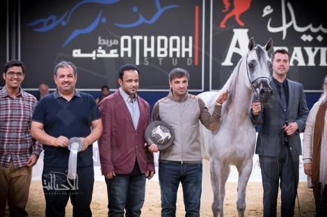 صور مقتطفة لليوم الأول من بطولة كأس كل الأمم آخن ٢٠١٧ لجمال الخيل العربية الأصيلة