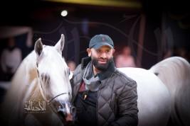 صور مقتطفة لليوم الثاني من بطولة كأس كل الأمم آخن ٢٠١٧ لجمال الخيل العربية الأصيلة