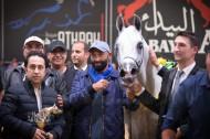 صور مقتطفة لليوم الختامي من بطولة كأس كل الأمم آخن ٢٠١٧ لجمال الخيل العربية الأصيلة