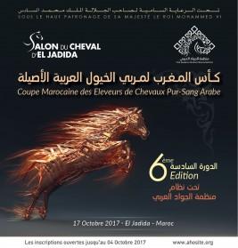برعاية ملك المغرب: منظمة الجواد العربي تستعد لتنظيم دورتها السادسة لكأس المغرب لمربي الخيول العربية