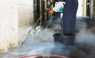 أهمية تنظيف وتعقيم بوكسات الخيول