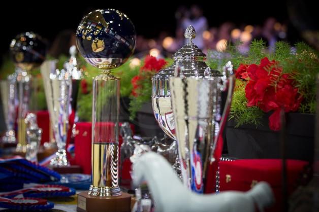 غداً.. تنطلق بطولة العالم لجمال الخيل العربية 2017 في نسختها الـ37 بباريس – الجدول