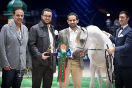 «السيد» و«الزبير» و«البداير»  يتألقون في أول أيام بطولة العالم باريس 2017 لجمال الخيل العربية – النتائج