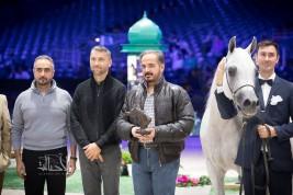 صور مقتطفة من اليوم الأول لبطولة العالم لجمال الخيل العربية – باريس ٢٠١٧