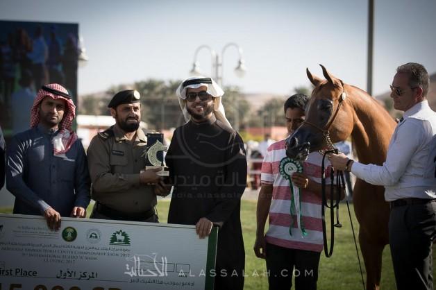 (السيد) و(الخالدية) يحققان أعلى درجات اليوم الثاني في بطولة مركز الملك عبدالعزيز الدولية 2017 لجمال الخيل العربية – نتائج الفئات