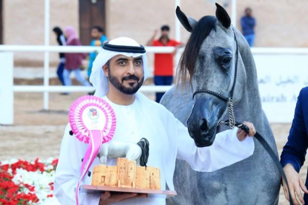 اختتام النسخة الثالثة من بطولة الفجيرة لجمال الخيل العربية – النتائج النهائية