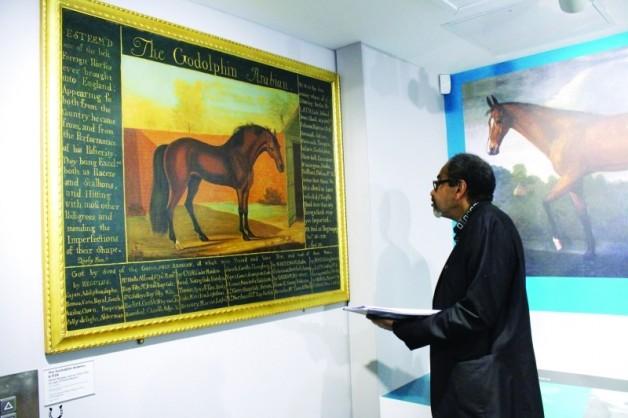 المتحف البريطاني للخيول.. توثيق لتاريخ الخيل العربية