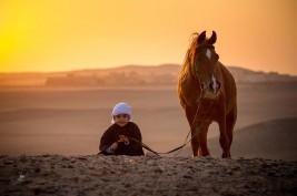 لغة الجسد لدى الخيول والتفاعلات البشرية