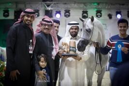 تواصل منافسات الفئات لبطولة الرياض لجمال الخيل العربية 2018 في يومها الثاني – نتائج الفئات