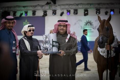 ختام ناجح للنسخة الثانية من بطولة الرياض لجمال الخيل العربية الأصيلة 2018 – النتائج النهائيةوصور التتويج