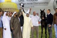 «الصقران» يحلق بذهب الأفراس ببطولة (الإمارات الوطنية) لجمال الخيل العربية 2018 – النتائج النهائية للبطولة الوطنية المحلية للمواطنين