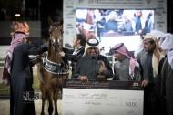 خيول «الشقب» تحقق خماسية و «الواوان» بصمته جلية ببطولة الكويت الدولية 2018