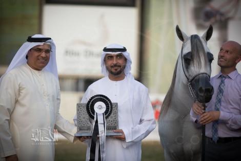النتائج النهائية بالصور لبطولة أبوظبي الدولية لجمال الخيل العربية الأصيلة 2018