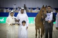 نتائج فئات اليوم الأول لبطولة دبي الدولية للجواد العربي 2018