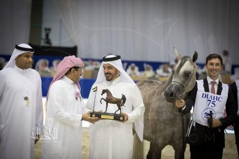 صور مقتطفة من بطولة دبي الدولية ٢٠١٨ للجواد العربي – اليوم الأول