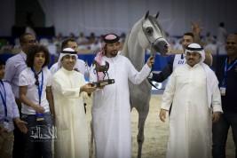نتائج فئات اليوم الثاني لبطولة دبي الدولية للجواد العربي 2018