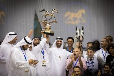 صور مقتطفة من اليوم الختامي لبطولة دبي الدولية للجواد العربي ٢٠١٨