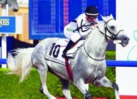 دراسة حديثة تؤكد ان ربط اللسان ذو فائدة لخيول السباقات