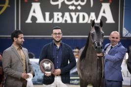 صور مقتطفة من اليوم الأول لبطولة كأس كل الأمم آخن ٢٠١٨ لجمال الخيل العربية الأصيلة