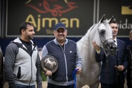 نتائج اليوم الثالث لبطولة كأس كل الأمم لجمال الخيل العربية 2018 بآخن