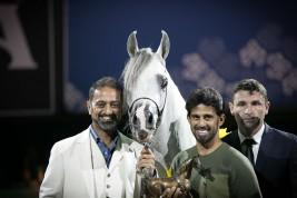 النتائج النهائية بالصور لبطولة كأس كل الأمم آخن 2018 لجمال الخيل العربية الأصيلة