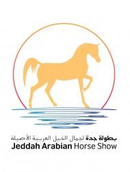 بمشاركة 188 جوادا  بطولة جدة لجمال الخيل العربية تنطلق الخميس – البرنامج