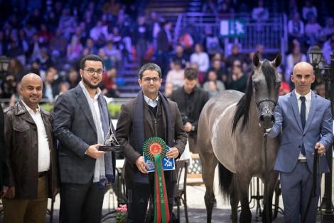 نتائج اليوم الثاني لبطولة العالم باريس 2018 لجمال الخيل العربية الأصيلة