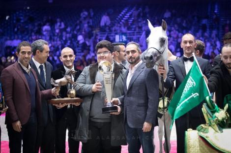 النتائج النهائية بالصورلبطولة العالم باريس 2018لجمال الخيل العربية الأصيلة