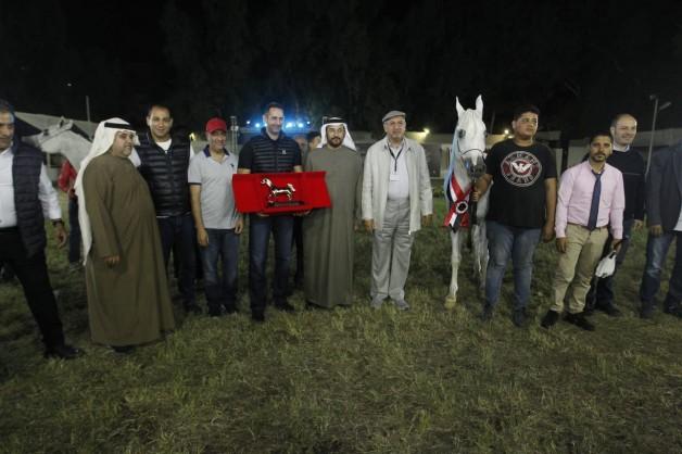 369 خيلا شاركت في مهرجان الخيول العربية بالزهراء في مصر و «الصافنات» تتوج كأفضل مزرعة