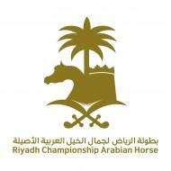 غداً هو آخر أيام التسجيل في بطولة الرياض لجمال الخيل العربية 2018 – النموذج والشروط