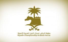 6 سيارات ترصد ضمن جوائز بطولة الرياض لجمال الخيل العربية الأصيلة 2019