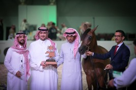 نتائج اليوم الأول لبطولة الرياض 2019 لجمال الخيل العربية الأصيلة