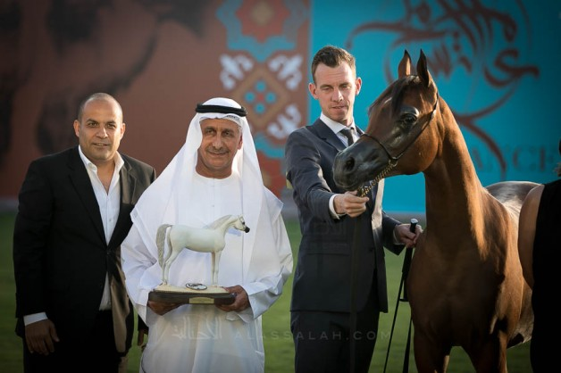 نتائج اليوم الأول والثاني لبطولة عجمان 2019 لجمال الخيل العربيةالأصيلة