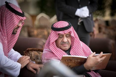 صور مقتطفة من اليوم الثاني من مهرجان الأمير سلطان العالمي 2019 للجواد العربي