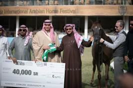 نتائج اليوم الثالث لبطولة جمال الخيل العربية بمهرجان الأمير سلطان العالمي 2019