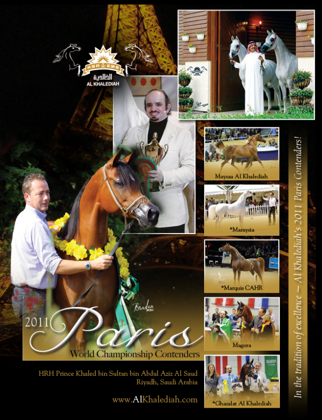 خيول الخالدية المنافسة في بطولة كأس العالم باريس ٢٠١١