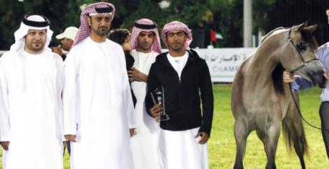 عمار النعيمي يشهد ختام بطولة الإمارات لجمال الخيول