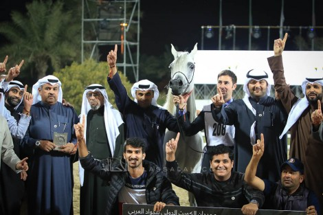 صور مقتطفة من اليوم الثاني من بطولة الكويت الدولية 2019 لجمال الخيل العربية الأصيلة